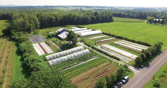 les-jardins-de-la-grelinett jpg