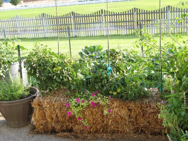 HAY BALE GARDENS FROM AROUND THE WORLD. 0. Straw Bale Gardening ...